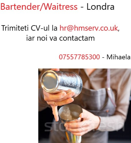 Waitress/Bartender